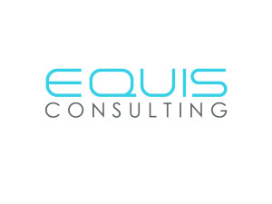 iris connect strategic partners equis